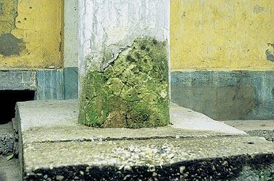Биоповреждение бетона сертифицированный бетон