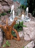 2531. Фрагмент ландшафта с фонтаном.  На переднем плане - корень тиса.