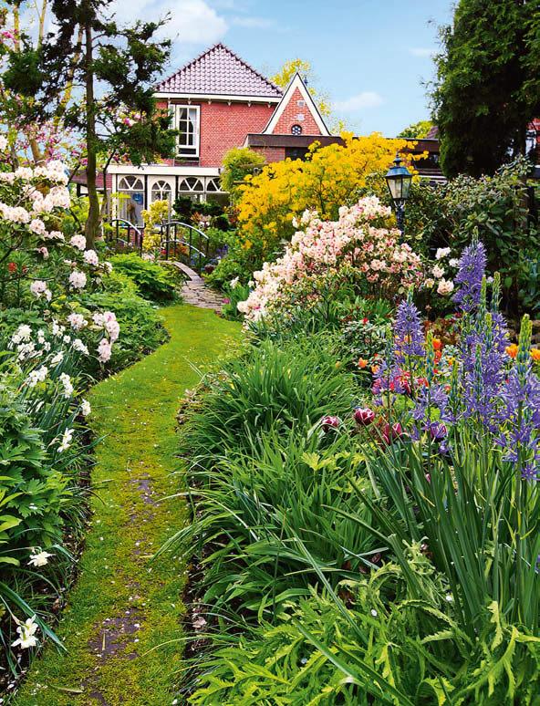красивые сады дачников подмосковья фото всегда находятся переднем