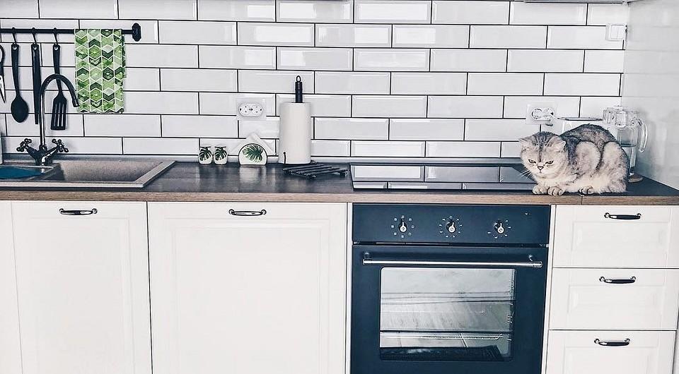 Укладка плитки кабанчик на фартук кухни: правила монтажа и яркие дизайн-идеи