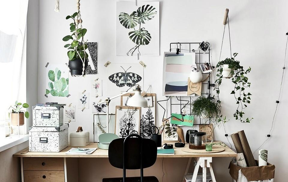 14 идеально организованных рабочих мест