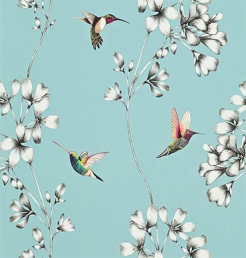 Обои с изображением птиц привн&...
