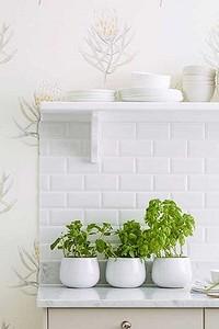 Как выбрать обои для кухни: все о материалах и оформлении