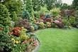 20лучших многолетних цветов для дачи