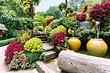10 простых идей, которые превратят ваш сад в шедевр ландшафтного дизайна
