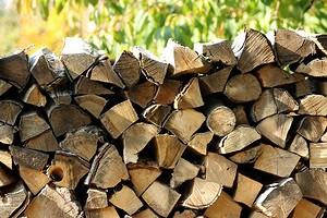 Заготовка дров для собственных нужд: правильная технология и все юридические тонкости