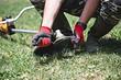 Как поменять леску на газонокосилке: подробная инструкция
