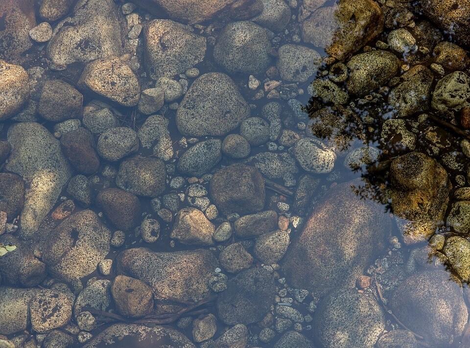 Как очистить воду в пруду своими руками