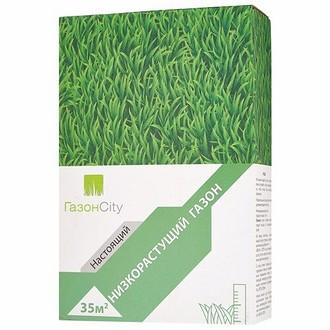 ГазонCity Настоящий Низкорастущий газон