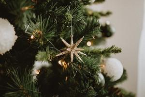 Что делать с елкой после праздников: 4 практичных идеи