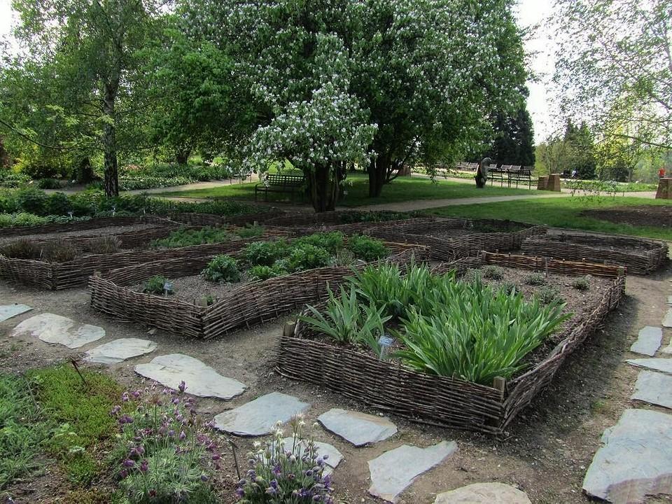 Оформление клумб в саду своими руками: полезные советы и фото, которые вам понравятся