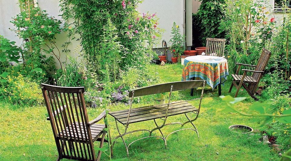 5 свежих идей для оформления лужайки на даче