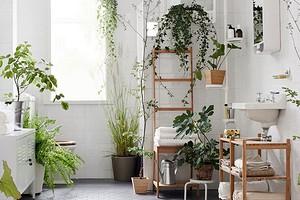 6 комнат, в которых можно и нужно использовать искусственные растения