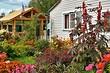 Всё о садовых товариществах: права, обязанности и актуальные изменения в законе
