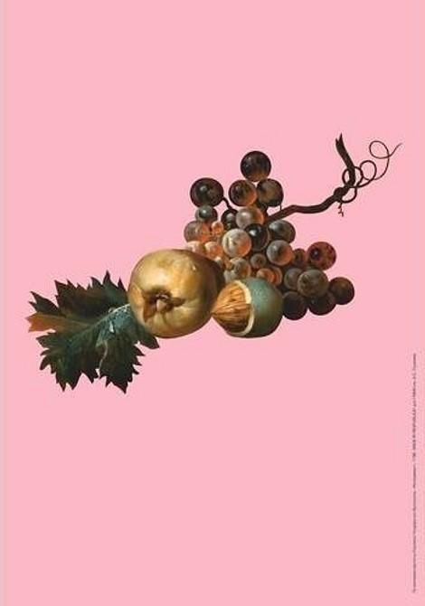 Плакат «Гроздь винограда»