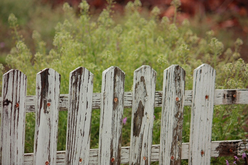 Красивые заборы для палисадника: лучшие варианты на фото