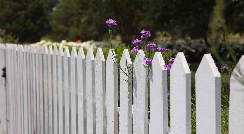 Вместо забора: 7 вариантов сделать дачный участок более приватным