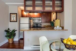 Как избавиться от мошек дома: 5 эффективных способов