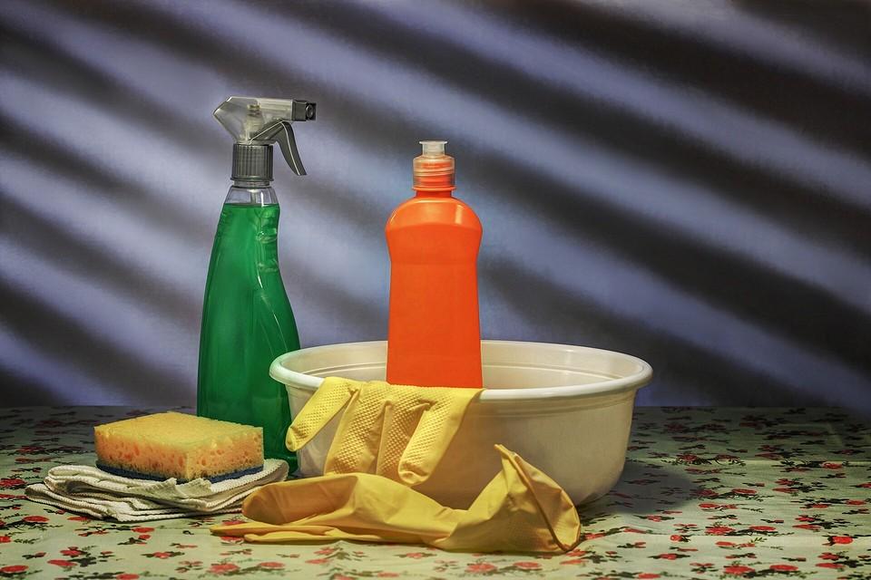 Как избавиться от домашних муравьев в квартире народными способами и покупными средствами