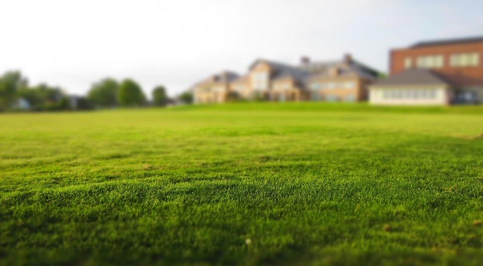 Как сеять газон правильно: засеиваем траву своими руками