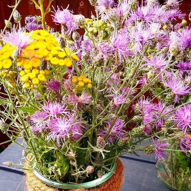 8 способов украсить сад осенью, когда все завяло и опало