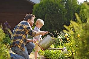 Как преобразовать садовое товарищество всельское поселение
