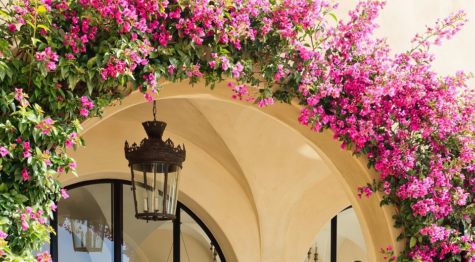 Делаем арку для цветов своими руками: инструкции и советы