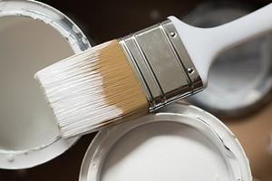 7 ошибок в окрашивании стен, которые совершают все (а вы теперь не будете)