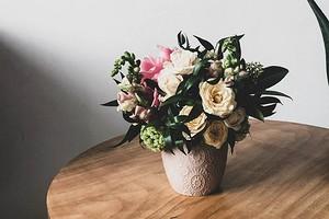 11 домашних растений, которые не стыдно подарить вместо букета