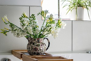 9 полезных лайфхаков по уходу за домашними растениями, которые точно стоит попробовать