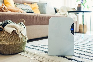И больше никакой сырости: 7 параметров, которые помогут выбрать осушитель воздуха для дома