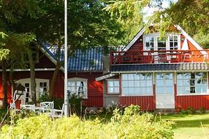 Как бороться с землеройкой на дачном участке: 10 способов