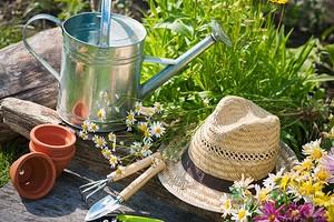 6 необходимых инструментов для дачника, которые упростят работу в саду