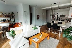 Как избавиться от двухвосток в доме и квартире: описание самых эффективных методик