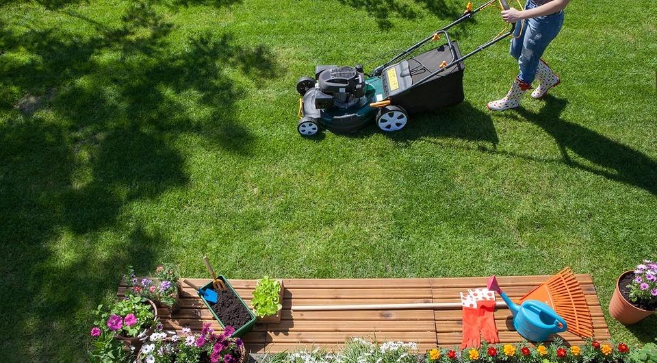 Красивый сад своими руками: 5 инструментов для ландшафтного дизайна, которые пригодятся