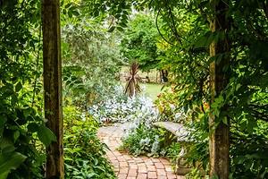 Что делать с заброшенным садом, чтобы он стал украшением дачи: 3 идеи