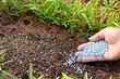 Какие минеральные удобрения вносят весной: подробный гид по видам препаратов