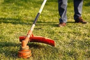 8 критериев выбора электрического триммера для травы (и мини-рейтинг лучших моделей)