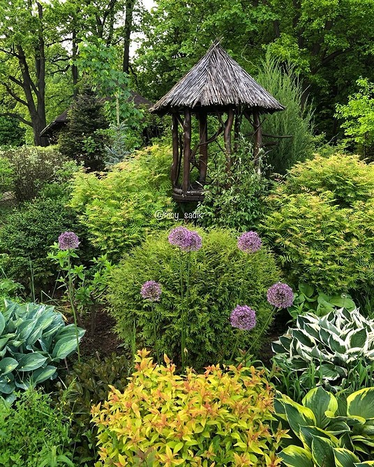 5 удачных комбинаций растений для эффектной клумбы