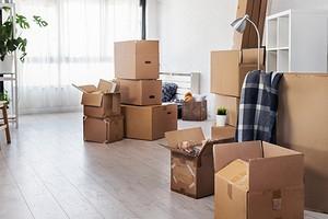 6 вещей, которые можно не убирать из квартиры во время ремонта (чтобы сэкономить время и деньги)