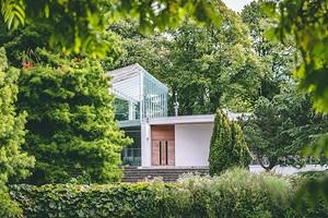 Как гармонично вписать хвойники в ландшафтный дизайн сада: советы и 60 фото