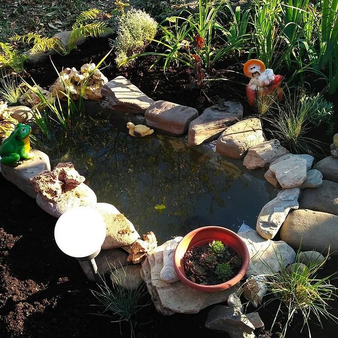 7 частых ошибок в оформлении декоративного пруда на даче