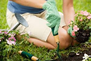 5 важных вещей, которые не забывают делать летом опытные дачники (проверьте себя)
