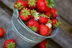 4 лучших способа хранения урожая клубники