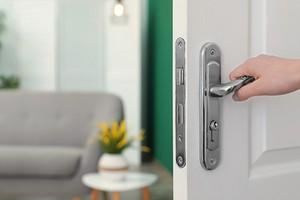 Как правильно выбрать дверной замок: обзор параметров, на которые важно обратить внимание