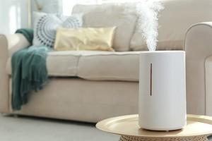 Где поставить увлажнитель воздуха, чтобы было удобно и красиво: 13 идей