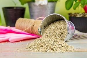 Вермикулит для растений: 9 способов применения