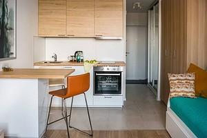 Оформляем кухню в квартире-студии (50 фото)
