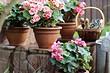 7 растений для сада, которые вырастить труднее всего (но с нашими советами у вас получится)
