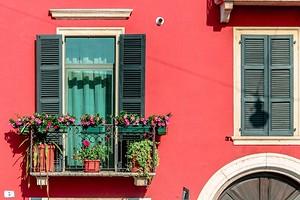 Удивите соседей: 6 нестандартных растений для балкона